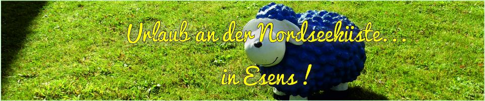 Foto-Banner blaues Schaf