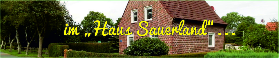 Foto-Banner mit Blick auf das Haus